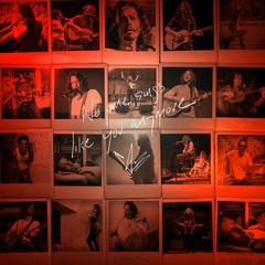 Chris Cornell - No One Sings Like You Anymore.jpg