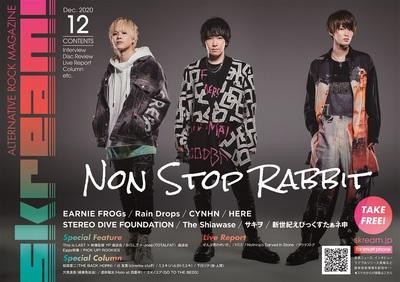 non_stop_rabbit_cover.jpg