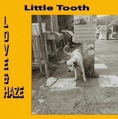 Little Tooth_Love_Haze.jpg