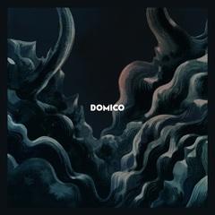 DOMICO_CHI_H1.jpg