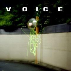 VOICE_JK.jpg