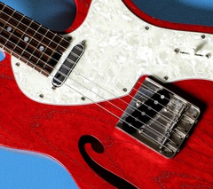 humbreaders_guitar_jacket.JPG