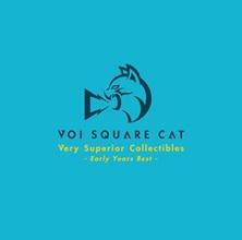 VOI SQUARE CAT