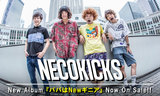 NECOKICKS